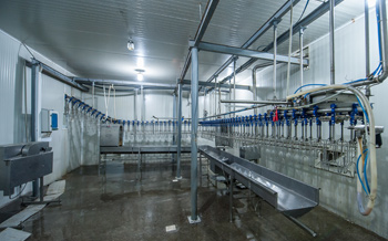 Chemical Blending of Cleaners & Disinfectants for the Poultry Industry